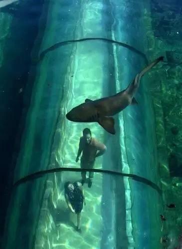 海底隧道观光旅游海底