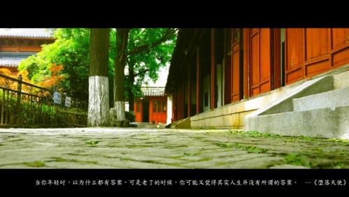 骑行去南京