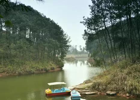 开县十里竹溪生态养生庄园