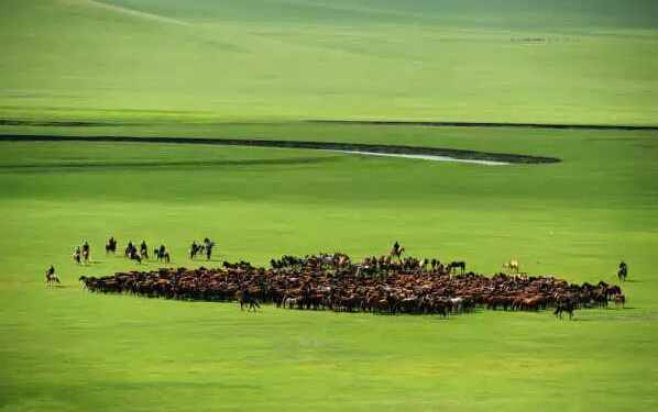 亚洲第一湿地景区——额尔古纳湿地