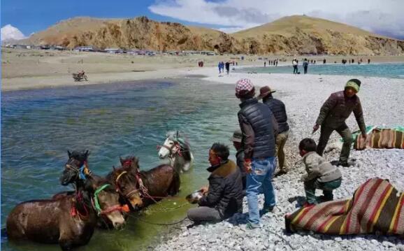 藏北赛马节