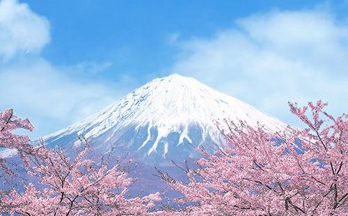 日本东京+富士山+镰仓+箱根双飞6日游关东深度游,邂逅江户情