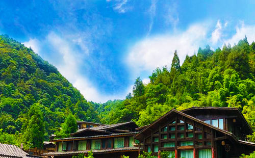 贵州十二背后-地下裂缝-双河谷汽车纯玩2日游王的风景