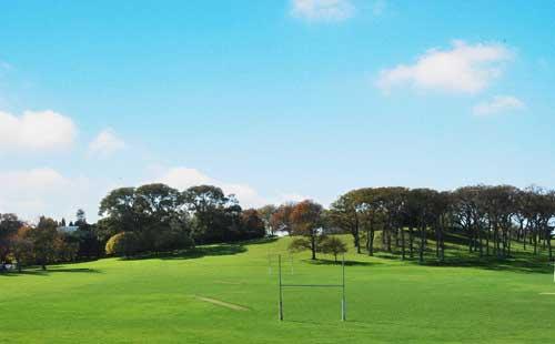新西兰奥克兰中央公园