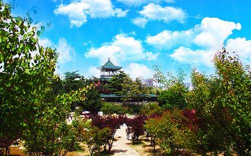 韓國·首爾·南山公園-重慶中國青年旅行社