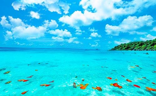 普吉岛-斯米兰岛-公主岛双飞6日游<普吉岛一天自由活动+豪华双体帆船出海>天域·斯米兰A系列