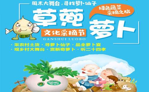 綦江赶水萝卜采摘+东溪古镇1日游草兜萝卜文化采摘节