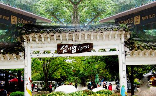 韩国南怡岛