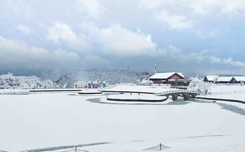 成都市内-西岭雪山-安仁古镇滑雪双汽3日游林海雪源奇观,滑雪天然胜地