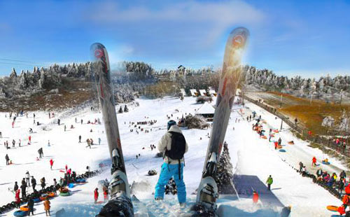 【纯玩】武隆仙女山冰雪1日游森林公园+滑雪场