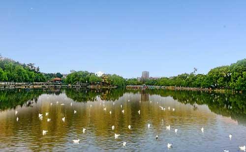 昆明翠湖公园