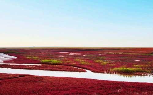 辽宁红海滩