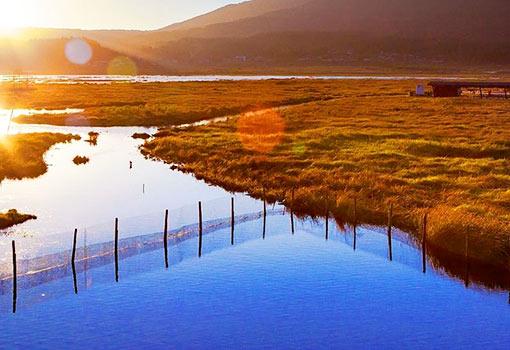 北海湿地1