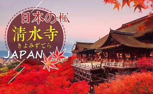 11月日本东京+箱根+富士山+镰仓赏枫6日游关东深度游,和枫江户情