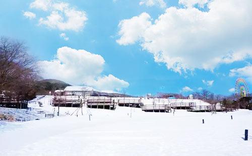 日本东京+箱根+富士山+镰仓戏雪半自助6日游玩转东京都5+1