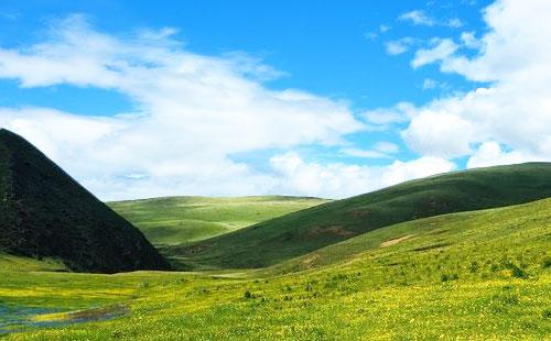 四川理塘毛垭大草原