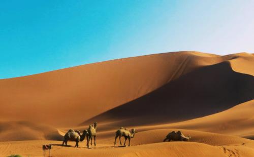 新疆库木塔格沙漠
