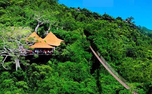 热带天堂森林公园