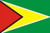 圭亚那-短期商务签证