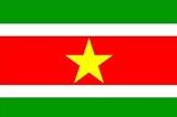苏里南-短期商务签证