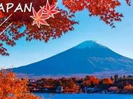 11月日本东京+箱根+富士山+京都+奈良+大阪赏枫6日游