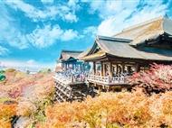 [高端纯玩]日本东京+富士山+奈良+京都+大阪6日游<全程日式四星酒店>