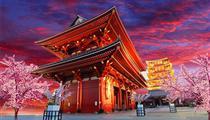 日本东京+横滨+河津赏樱6日游