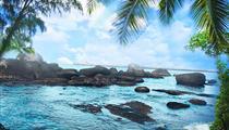 海南三亚蜈支洲岛+玫瑰谷+热带天堂森林公园+大小洞天纯玩5日游<玩转海陆空+0购物0自费>