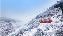 冰雪南川金佛山、金佛寺祈福、天星小鎮純玩一日游