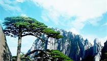 黄山观日出+赏晚霞(住山顶)、穿越西海大峡谷、中国画里的乡村-水墨宏村、徽州双古街四星纯玩4日游