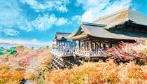 [高端純玩]日本東京+富士山+奈良+京都+大阪6日游<全程日式四星酒店>