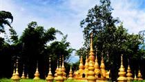 西双版纳-中缅边境重庆直飞版纳5天4晚奢华浪漫之旅