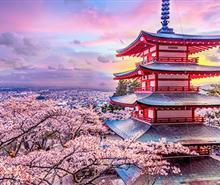 【日本本州】东京-富士山-京都-奈良-大阪早春泡汤6日游