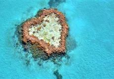 澳大利亚+新西兰13日游<墨尔本凯恩斯绿岛大堡礁+热带雨林+香槟池>