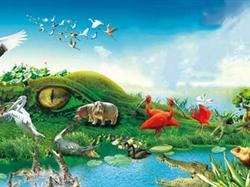长隆野生动物园+欢乐世界+水上乐园+飞鸟乐园双动/双飞4日游