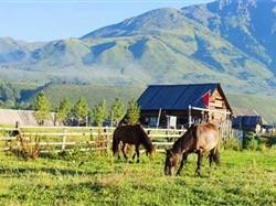 新疆天山天池-喀纳斯-胡杨林-白沙湖-火焰山双卧双飞8-10日游