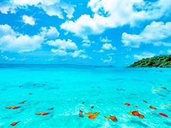 普吉岛-斯米兰-公主岛-海豚岛6日游<5+1自由行+0自费+豪华双体帆船+进3个店>