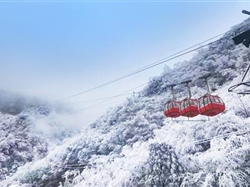 冰雪南川金佛山、金佛寺祈福、天星小镇纯玩一日游
