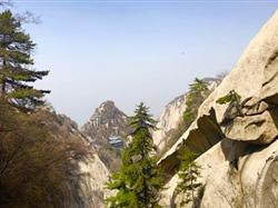 西安华山、兵马俑、明城墙、大雁塔广场双卧5日游