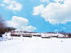 日本东京+箱根+富士山+镰仓戏雪半自助6日游