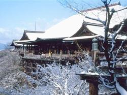 【日本本州】东京-富士山-京都-奈良-大阪赏雪泡汤6日游