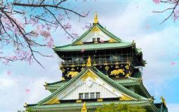 日本本州-东京+富士山+京都+奈良+大阪赏早樱泡和汤6日游
