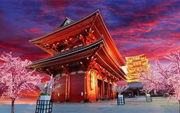 日本東京+橫濱+河津賞櫻6日游