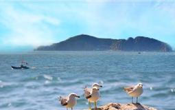 济南、泰山、青岛、威海蓬莱、大连、旅顺双飞单船7日游