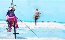 [重庆直飞]斯里兰卡+马尔代夫2国联游9天7晚游(最兰卡)