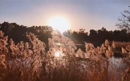 【北京-天津】天安门+圆明园+宛平城+卢沟桥精髓文化双卧/双飞6日游(玩转京津冀)