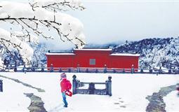南川金佛山北坡赏雪、古佛洞祈福一日游<含景区门票>