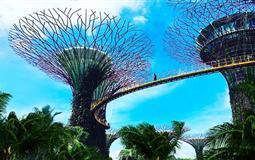 新加坡深度纯玩半自由行6日游