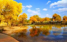 七彩丹霞、神秘黑水城、绚丽胡杨林、巴丹吉林沙漠纯玩之旅双卧8日游