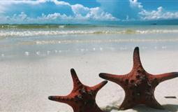 越南富国岛星星海滩+出海+市区双飞5/6日游<四星酒店+进2个店>(富国花开)